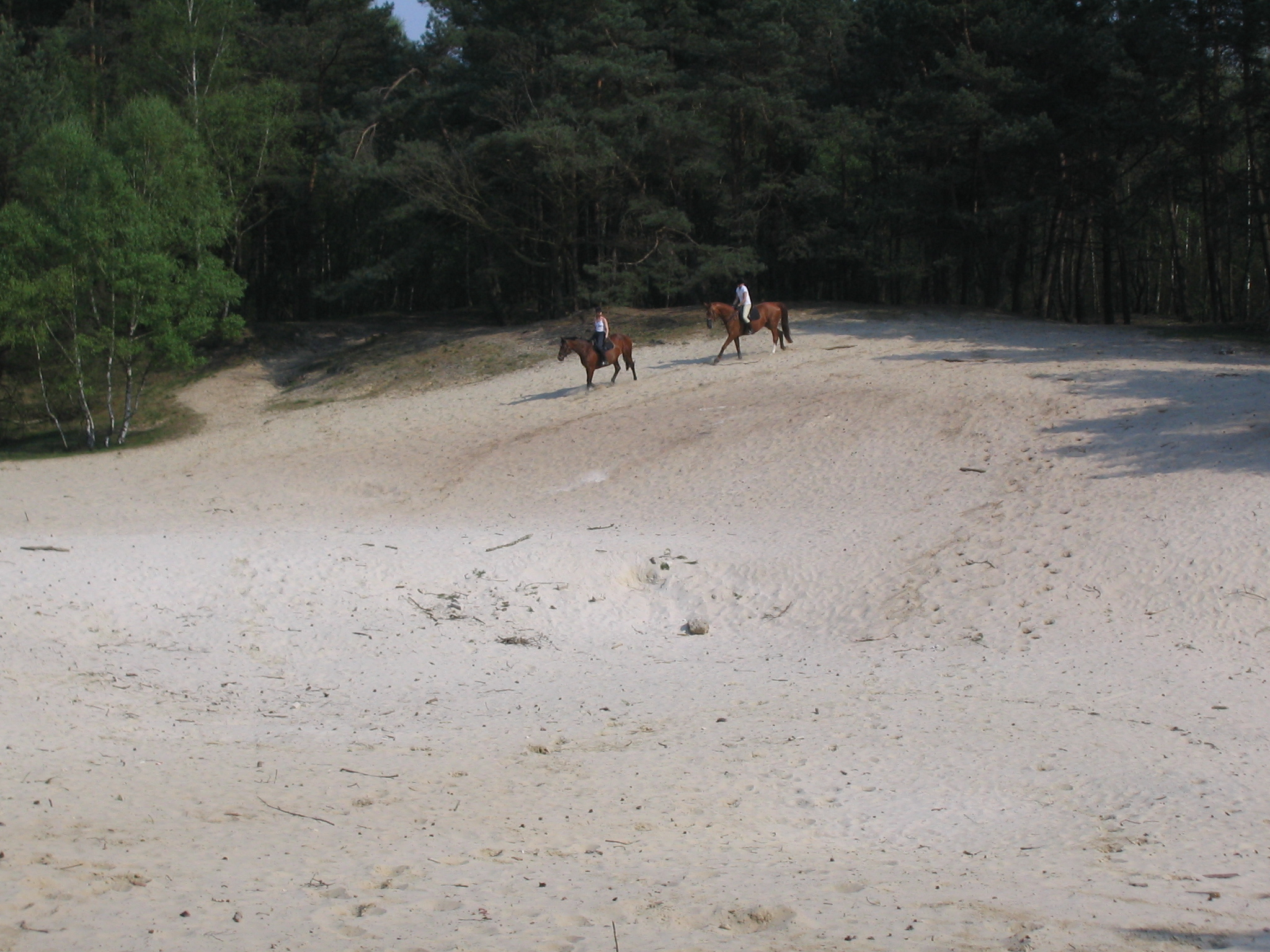 Warwer Sand