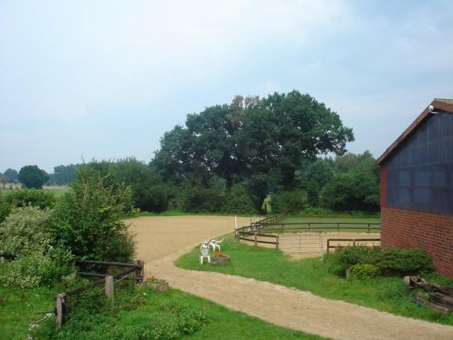 Reitplatz und Roundpan